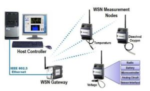 Common WSN Architecture