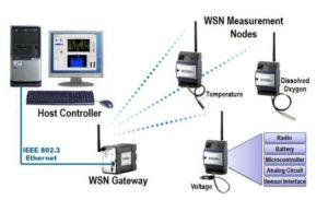 Common WSN Architecture